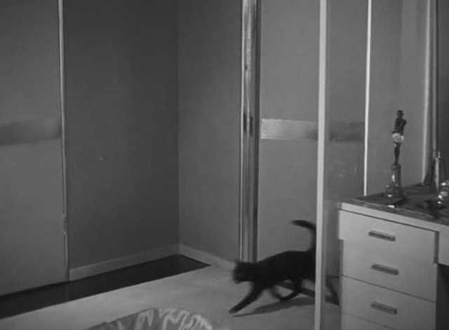 The Black Cat 1934 - black cat running into room