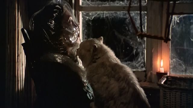 Black Christmas - Claude cat licking Clare's Lynne Griffin face with bag over it