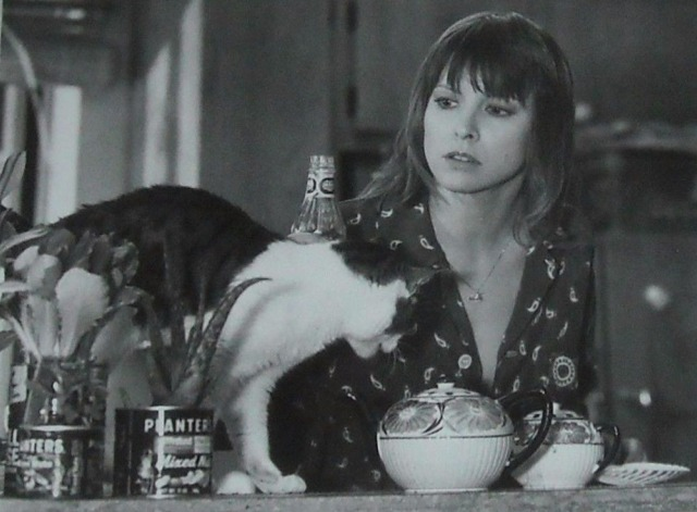 Blue Thunder - Kate Candy Clark with tabby and white cat black and white still
