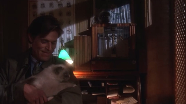 Body of Evidence - Frank Willem Dafoe picking up Snowshoe cat