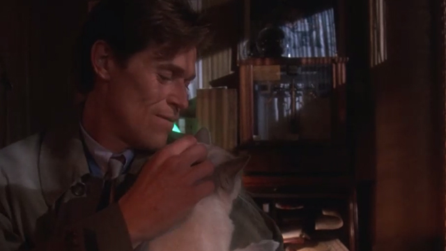 Body of Evidence - Frank Willem Dafoe petting Snowshoe cat