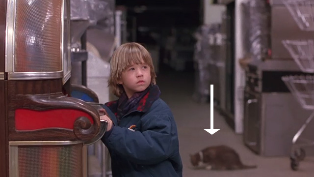 Bogus - Albert Haley Joel Osment with gray and white cat in background