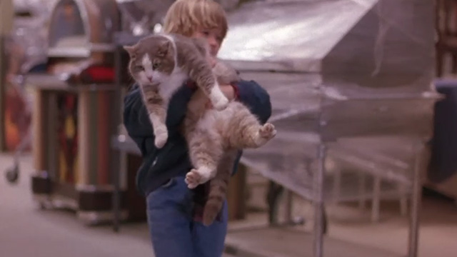 Bogus - Albert Haley Joel Osment carrying gray and white cat