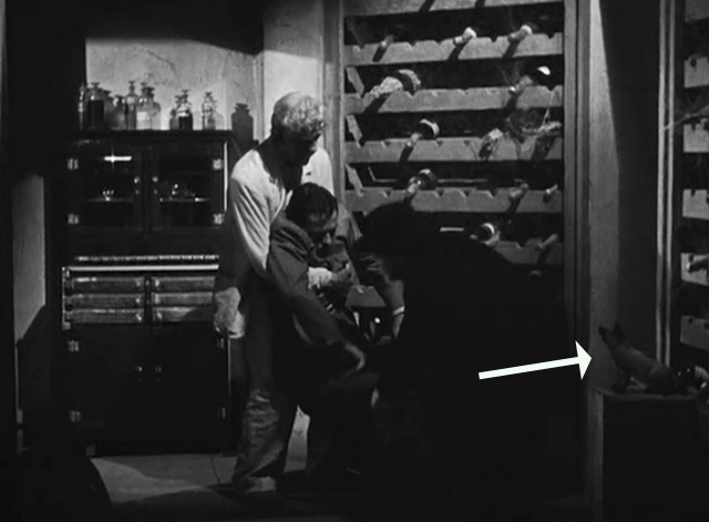 The Boogie Man Will Get You - Dr. Arthur Lorencz Peter and Dr. Billings Boris Karloff carrying body with Siamese kitten nearby