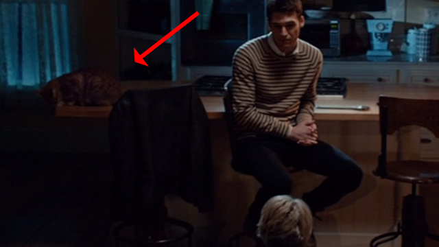 The Boy Next Door - cat Dexter sitting on counter behind Noah Ryan Guzman