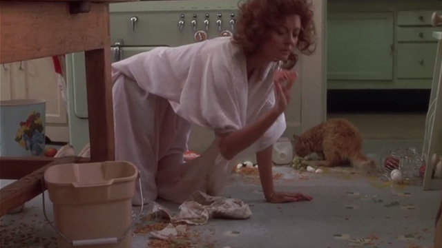 Bull Durham - long-haired ginger cat on floor with Annie Susan Sarandon in kitchen