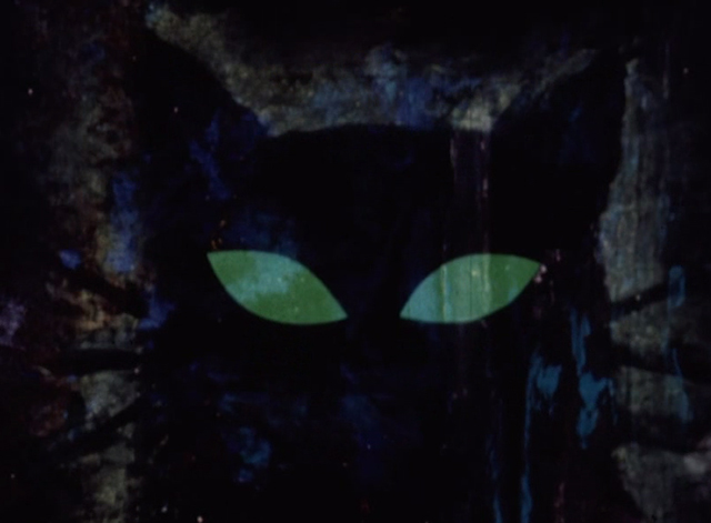 Cat and Mouse - close up of artistic black cat with green eyes