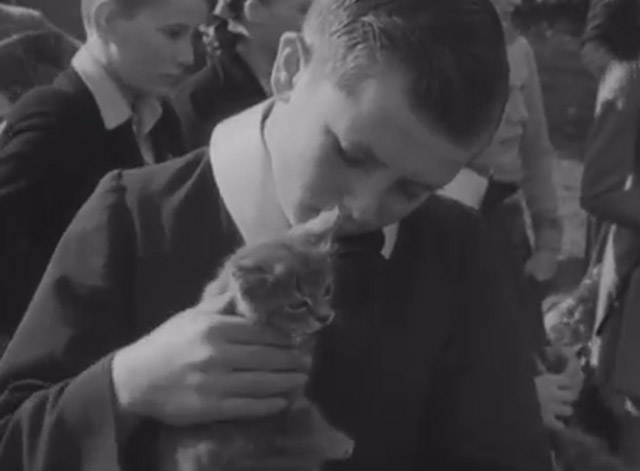 Cats, Dog, Mice and a Goldfish Go to Church - boy with tabby kitten