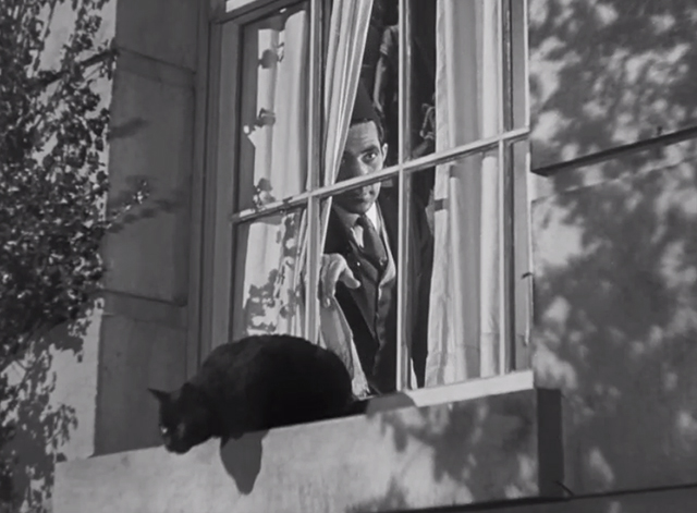 Charlie Chan at Treasure Island - black cat on windowsill with man peeking out from behind curtains