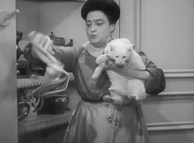 Chasing Yesterday - Therese Helen Westley grabbing towel to dry white cat Whitey