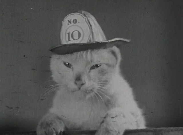 Chevrolet Leader News Volume 2 No. 4 Mickey the Fire Cat in his hat