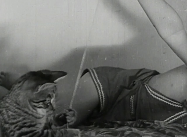 A Child Went Forth - tabby kitten playing with string on bed