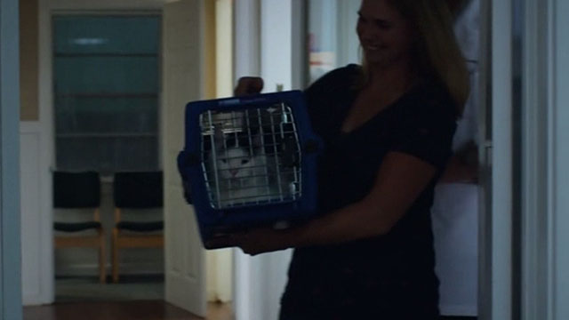 The Choice - woman carrying gray and white cat from clinic in carrier
