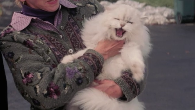 christmas with the kranks white persian cat muffles hisses - Christmas With The Kranks Trailer