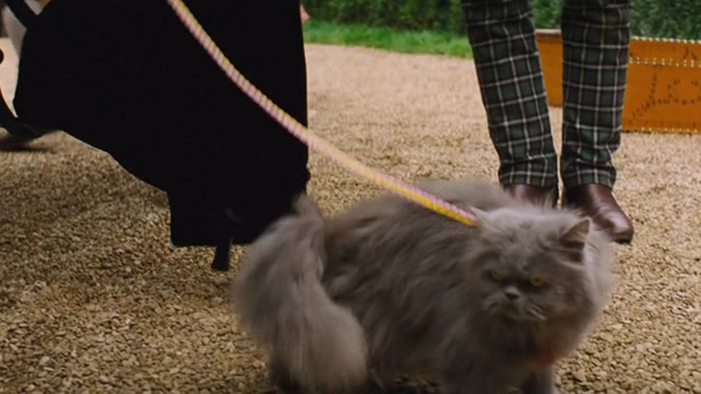 Cinderella live action - grey Persian cat Lucifer outside carriage