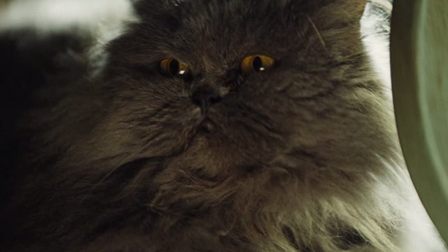Cinderella live action - grey Persian cat Lucifer spots mouse
