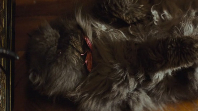 Cinderella live action - grey Persian cat Lucifer lying on back after running into cabinet