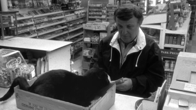 Clerks - black cat steps in litter box on counter in front of customer