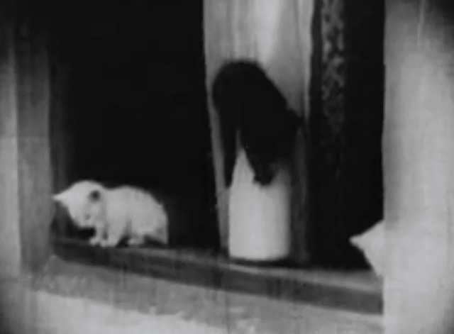 A Clever Dummy - black and white kittens on windowsill with milk bottle