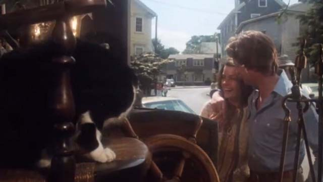 Coma - tuxedo cat in chair in antique store window with Susan Geneviève Bujold and Mark Michael Douglas