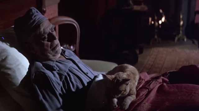 The Comedy of Terrors - Rhubarb Cleopatra ginger cat sleeping on Amos Boris Karloff