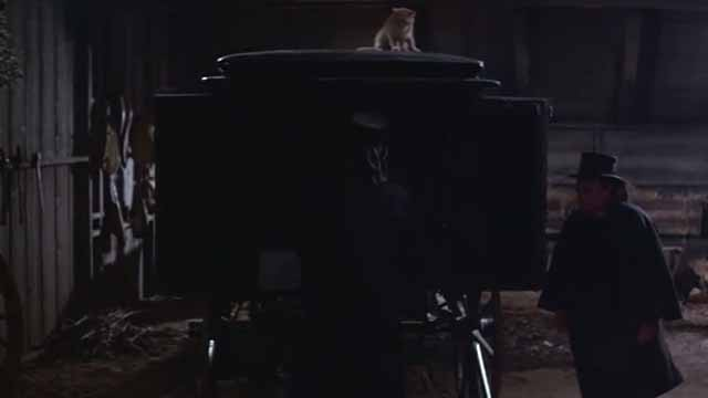 The Comedy of Terrors - Rhubarb Cleopatra ginger cat sitting on top of hearse coach with Gillie Peter Lorre and Trumbull Vincent Price