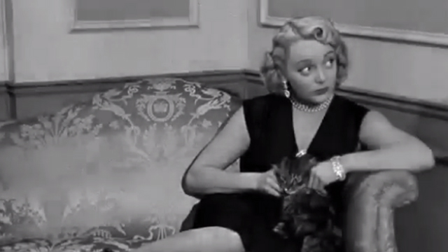 Corny Casanovas - girl Connie Cezon petting long-haired tabby cat on couch