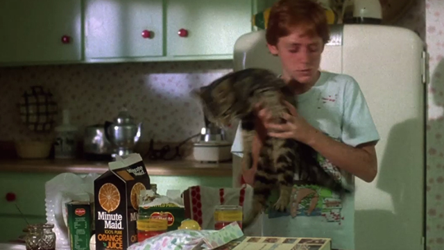 Critters - Brad Scott Grimes lifts Bengal tabby cat Chewie off table