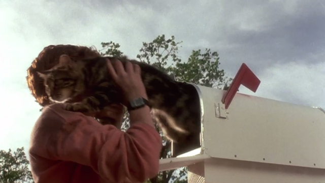 Critters - Brad Scott Grimes pulling Bengal tabby cat Chewie from mailbox