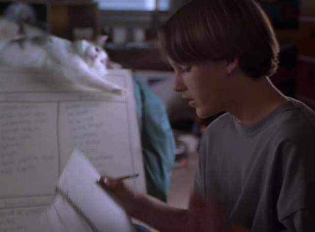 The Cure - gray and white long-haired cat on dry erase board in background behind Erik Brad Renfro