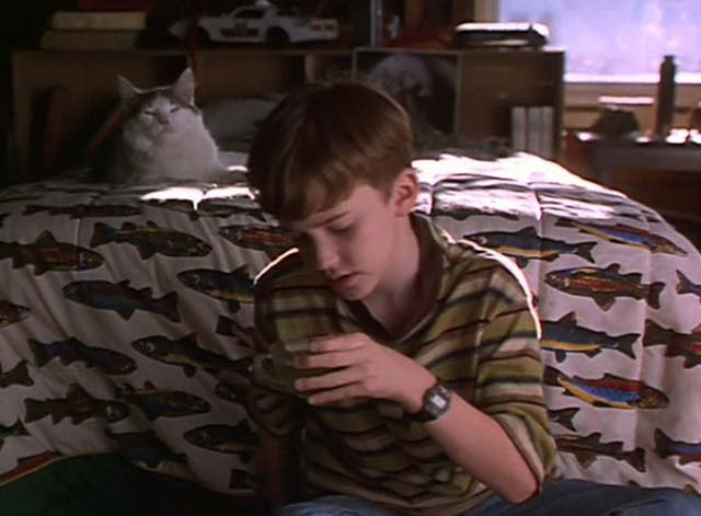 The Cure - gray and white long-haired cat on bed behind Dexter Jospeh Mazzello