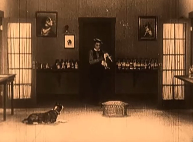 Daydreams - Buster Keaton picks up tuxedo cat from shelf