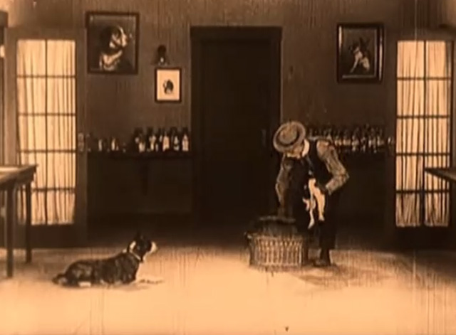Daydreams - Buster Keaton places tuxedo cat into basket