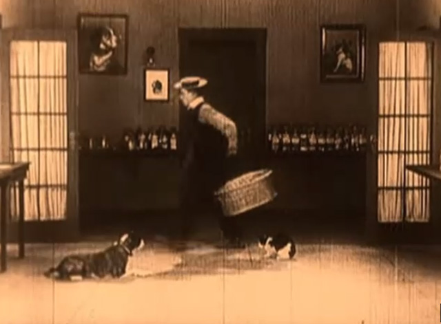 Daydreams - Buster Keaton walks away with basket leaving tuxedo cat on floor with dog