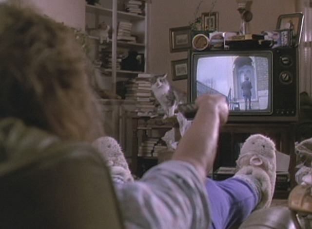 Death Becomes Her - Helen watching TV with cats