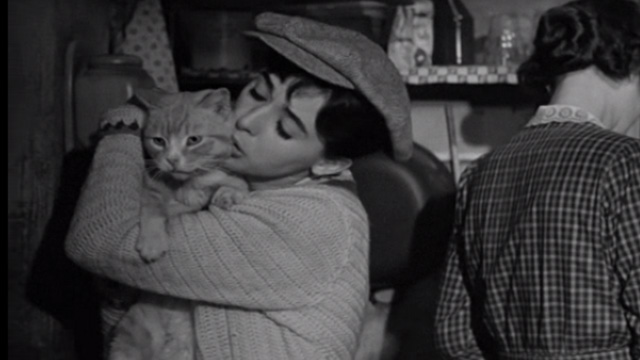 The Diary Of Anne Frank 1959 Cinema Cats