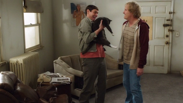 Dumb and Dumber To - Lloyd Jim Carrey and Harry Jeff Daniels with grey and white cat Butthole