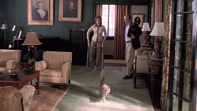 Empire Falls - long haired gray cat Timmy running away from Cindy Kate Burton and Miles Ed Harris
