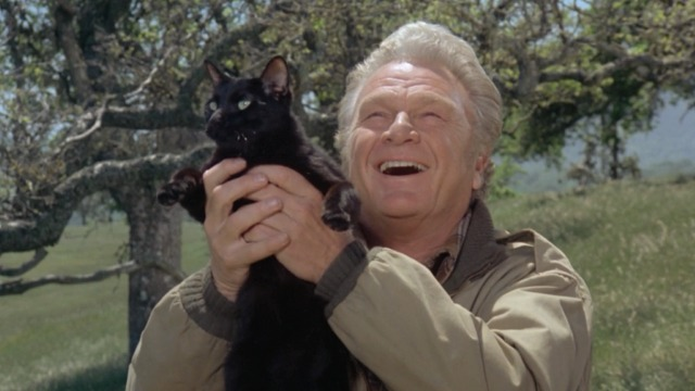 Escape to Witch Mountain - Winkie black cat being held up by O'Day