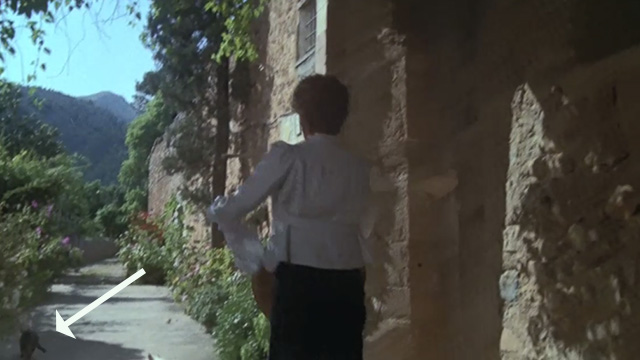 Evil Under the Sun - cat running away from Daphne Castle Maggie Smith outside hotel