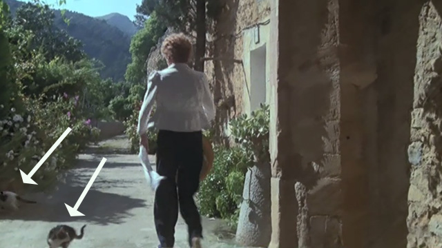 Evil Under the Sun - cats running away from Daphne Castle Maggie Smith outside hotel