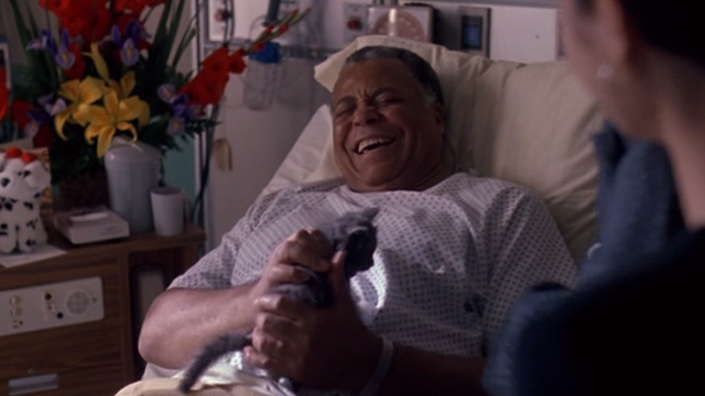 Excessive Force - Jake James Earl Jones with tabby kitten in hospital bed