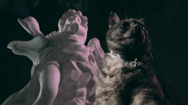 Exte: Hair Extensions - Rupin Lupin Manx cat in front of statue