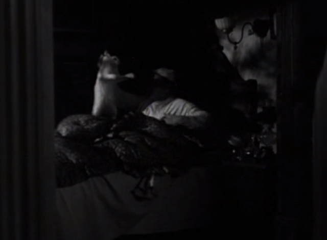 Flesh - Polakai Wallace Beery holding up long-haired white cat by scruff