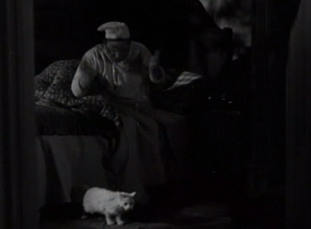 Flesh - Polakai Wallace Beery shooing away long-haired white cat be bed