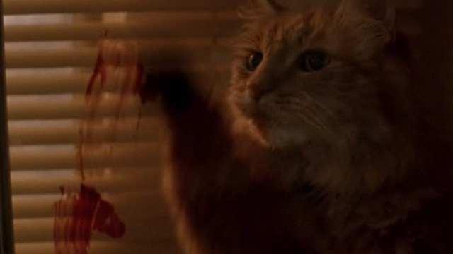 The General's Daughter - long-haired ginger cat smearing blood on window