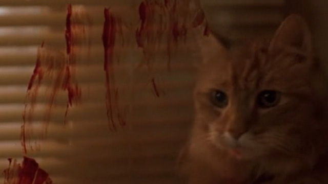 The General's Daughter - long-haired ginger cat behind bloody window