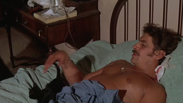 The Getaway - Rudy Al Lettieri with black kitten Poor Little Harold on bed in hotel room