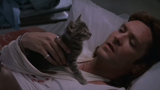 The Getaway - Rudy Michael Madsen lying on table with tabby kitten Kitty on chest