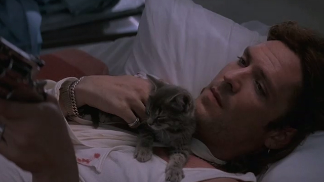 The Getaway - Rudy Michael Madsen lying on table with tabby kitten Kitty relaxing on chest